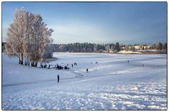 Romjul på Nordbytjernet (Krogen) Tags: norge norway norwegen akershus romerike ullensaker nordbytjernet vinter winter krogen olympusomd