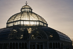 The Palm House, Sefton Park (nickcoates74) Tags: a6300 ilce6300 liverpool merseyside palmhouse seftonpark uk