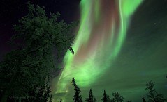 River In The Sky (Katy on the Tundra) Tags: northernlights auroraborealis nightsky