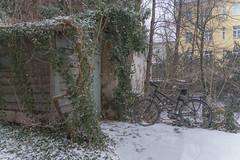2019 Bike 180: Day 7, January 24 (suzanne~) Tags: snow bicycle munich bavaria germany