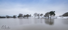 Snowy Setley Pond (C Sinclair) Tags: newforest setleypond snow frozenlake cold winter trees