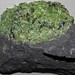 Peridotite mantle xenolith in phonotephrite (Peridot Mesa Flow, Middle Pleistocene, 580 ka; Peridot Mesa, San Carlos Volcanic Field, Arizona) 21
