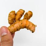 Organic turmeric root hold in hand thumbnail