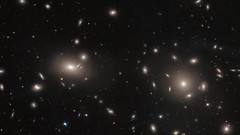 Clusters within clusters (europeanspaceagency) Tags: comacluster esa europeanspaceagency space universe cosmos spacescience science spacetechnology tech technology hst hubblespacetelescope galaxy nasa cluster globularcluster ngc4889 ngc4874 spacetelescope hubble
