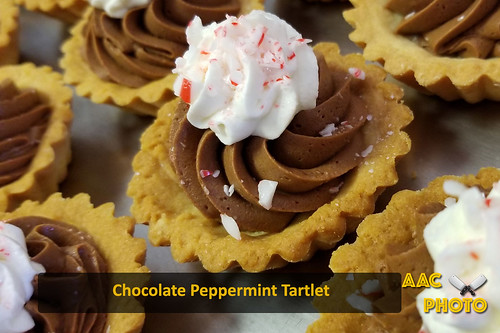"Chocolate Peppermint Tarts • <a style=""font-size:0.8em;"" href=""http://www.flickr.com/photos/159796538@N03/31579916247/"" target=""_blank"">View on Flickr</a>"