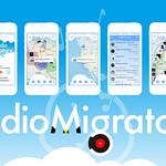 Audio Migratoryの写真