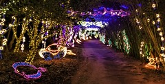 "Bellingrath Magic Christmas in Lights ""Under the Sea"" display (ciscoaguilar) Tags: alabama bellingrath lights christmas theodore"
