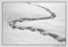 Abstractionism with snow - 27 (cienne45) Tags: carlonatale cienne45 natale valpusteria pusteria altoadige sudtirolo anterselva snow abstract