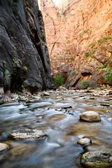 Utah_2018_ (105 of 144) (jasinrodriguez) Tags: zion trekking family narrows subway zionnationalpark nationalparks outdoors