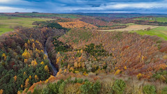 Staward From Above 2.0 (Jamesylittle) Tags: trees view landscape autumn fall colours leaves valley groge allen banks 2018 river fields autumncolours drone dji above langley
