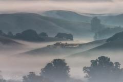 Foggy palace (wandering indian) Tags: fog nature landscape sigma nikon telephoto benro kedardatta california petaluma winterfog sunrise cloudsstormssunsetssunrises travel