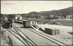 Postkort fra Agder (Avtrykket) Tags: bolighus damplokomotiv hest hus jernbane jernbanespor jernbanestasjon lokomotiv postkort uthus vedstabell vogn froland austagder norway nor