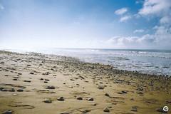 (LV diaphragm) Tags: photography pellicule argentique analog lomography kodak canon af35m point shoot la rochelle nantes surf wave beach france