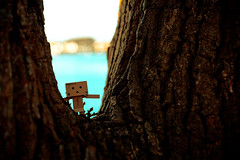 1 (sebastianba95) Tags: canon 5dm3 5d 5dmarkiii tamron2470 tamron2470g2 denmark danmark dk japan japanese danboard danbo nature bokeh figure cute colors amazon adventure