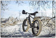 Jan 1 snow run - explored 01-03-2019 (speedcenter2001) Tags: motobecane fatbike bicycle snow single track nikkors55mmf12 manualfocus depthoffield vintage d600 cycling winter wisconsin silverefexpro2 nik framed wolftooth fenders veetire nd8