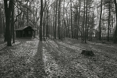 022588B&W Cabin By The Lake (David G. Hoffman) Tags: blackandwhite cabin woods shadows fog lake