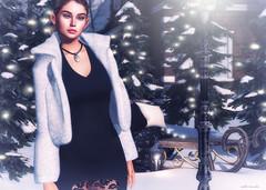 winter's night (Callie Hamelin) Tags: lelutka glamaffair tableauvivant empyreanforge coco bauhausmovement mossmink hive trompeloeil dad scarletcreative uber fameshed posefair