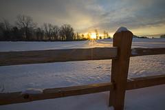 Half Light (Matt Champlin) Tags: weekend fence life saturday winter sunrise beautiful sun farm canon 2019 light fun love adventure morning