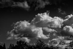 Clouds -9013580 (Jeffrey Balfus (thx for 3.3 Million views)) Tags: sonyalpha sonya9mirrorless sonyilce9 fullframe emountsony100400mmg sal100400f35g clouds sky blackandwhite bw monochrome