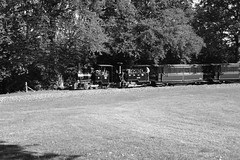 BWLR 88167bw (kgvuk) Tags: bwlr bredgarandwormshilllightrailway kent railway narrowgauge train steamtrain locomotive steamlocomotive steamengine zambezi 042t limpopo 060t