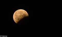 Ende der totalen Mondfinsternis III / End of the total lunar eclipse III (Fotännie) Tags: blutmond mondfinsternis vollmond bloodmoon sanguinemoon