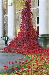 Weeping Window (jo92photos) Tags: weepingwindow 2018 london imperialwarmuseum art installation cascade cascadingpoppies poppies ceramic red paulcummins tompiper 1418now artinstallation remembrance