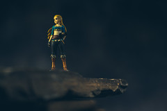 Research Expedition (3rd-Rate Photography) Tags: zelda thelegendofzelda breathofthewild nintendo amiibo videogame toy toyphotography sheikahslate figure canon 50mm 5dmarkiii jacksonville florida 3rdratephotography earlware 365 woman female girl