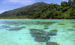 Torquoise water of Adang-Rawi archipelago (B℮n) Tags: kolipe kohlipe เกาะหลีเป๊ะ kohlippy adangrawi archipelago ploysiam speedboat national park kohturatao koturatao kohlipeh nationalparkkohtarutao tarutao bounty island thailand anadamansea sandy beach pakbara marinepark snorkling adang rawi tourism vacation holiday coral reef tropical fish nemo protectedarea chaolay chaoley boat palmtree coconuts crystal clear water seawater siam seagypsies longtail nature reserve province satun blue cyan thai sunrise bulowbeach deserted girl woman sunbathing lowseason rainyseason relax paradise swimming solitude 50faves topf50 100faves topf100