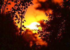 Buscando la luz (portalealba) Tags: zaragoza zaragozaparque aragon españa spain sunset atardecer ocaso portalealba