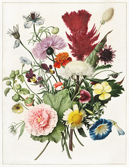 Bouquet of Flowers by an anonymous artist (1680). Original from The Rijksmuseum. Digitally enhanced by rawpixel. (Free Public Domain Illustrations by rawpixel) Tags: pdproject antique arrangement art beautiful bloom blossom bouquet composition dark design drawing elegance floral flowers fresh freshness home illustrated illustration leaf life lovely natural nature object old ornamental ornate painted painting retro stilllife style table vintage