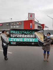 Kaufland Wrocław1.d (Otwarte Klatki) Tags: aktywizm karpie streetwork
