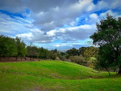 """""""Down The Valley And Through The Trees"""" (bradhodges09) Tags: lush suburbanexploration openspace trees cloudsandsky clouds grassland rollinghills greengrass valley"""