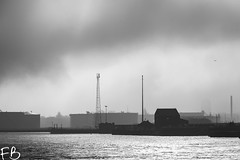 Christmas Eve River (frisiabonn) Tags: uk birkenhead merseyside england britain wirral monochrome black white greyscale bw cammell laird tranmere oil terminal fog sun shipyard weather dark river mersey