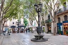 Font-Barcelonina