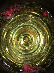 sparkling mobilephonephotography (wanda.w) Tags: wine sparklingwine sekt sparkling iphone iphonephotography cellphonephotography cellphone photography mobilephone mobile