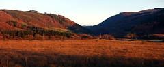 Cwm Llyfnant o Gyffordd Dyfi (Rhisiart Hincks) Tags: landscape tirlun maezioù paisaje tírdhreach paisaia cruthtìre cyffordddyfi cwmllyfnant dyfijunction powys maldwyn coucherdusoleil zonsondergang machlud auringonlasku kuzhheol ilunsenti solpor tramonto sonnenuntergang napnyugta dolfodhanagrèine lhienygreiney zachódsłońca solnedgång gorsaf stáisiún geltoki tihenthouarn tigar gare estacion station stèisean