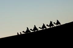 silhouette (anna barbi) Tags: carovana cammelli marocco silhouette