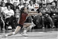Penn State v Nebraska 2018 (HuntingtonPhotos) Tags: haroldhouserphotography nikon 2018 d5 b1g devaneycenter nebraskavpennstate volleyball nebraskavolleyball kenziemaloney sports hmfrphotos huntingtonphotos