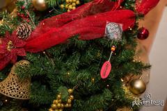 Comando de Navidad en Carmona