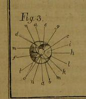 This image is taken from Page 241 of A complete physico-medical and chirurgical treatise on the human eye (Medical Heritage Library, Inc.) Tags: ear eye wellcomelibrary ukmhl medicalheritagelibrary europeanlibraries date1788 idb28766957