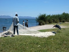 fisherman mending his nets (Linda DV) Tags: lindadevolder travel africa tanzania 2018 nature victorialake geotagged fauna flora