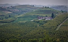Grinzane Cavour Langhe 18 (zanf89) Tags: grinzane cavour alba langhe piemonte colline vino barolo nocciole