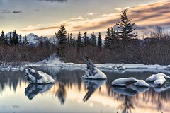 Stumps pond 2017 (John Andersen (JPAndersen images)) Tags: alberta banff cascademountain clouds mountrundle reeds stumps trees vermillionlake