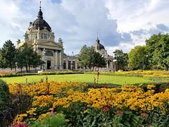 Budapest - Szechenyi Bath (Pavlov'sDog) Tags: budapest bath szechenyi szechenyibath flowers colorful flores colorido paisaje arquitectura architecture europa europe