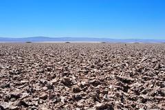 Four Utility Poles (Chris Hunkeler) Tags: chile atacama desert salt mud utility poles piles mounds