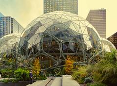 Triple Bubbles (4 Pete Seek) Tags: seattle amazon sphere glassbuilding amazonsphere downtown downtownseattle rokinon rokinon12mm wideangle manualfocus