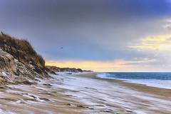 Winter on South Beach (John Piekos) Tags: dunes d750 marthasvineyard winter dawn surf massachusetts edgartown southbeach snow beach bird nikon sand sunrise seagull 2470mm vacation nortonpoint