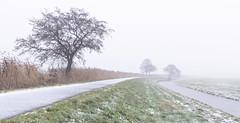 Early Sunday Morning in the Alblasserwaard (Wim Boon Fotografie) Tags: wimboon canoneos5dmarkiii canonef1635mmf4lisusm earlymornings alblasserwaard alblasserdam holland sneeuw snow natuur nature nederland netherlands winteriscoming