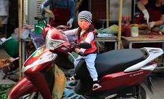Easy rider. (DepictingPhotos) Tags: asia babies duonglam motorbikes transport vietnam
