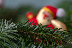 Abschied vom Weihnachtsmann (p.schmal) Tags: olympuspenf olympus60mmf28makro weihnachtsmann santaclaus abschied